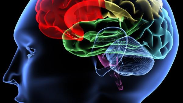 Έρευνα συνδέει τα αναβολικά με την αυξημένη εγκεφαλική ζημιά