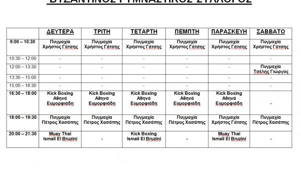Vizantinos Target Sport Club:Πρόγραμμα μαθημάτων