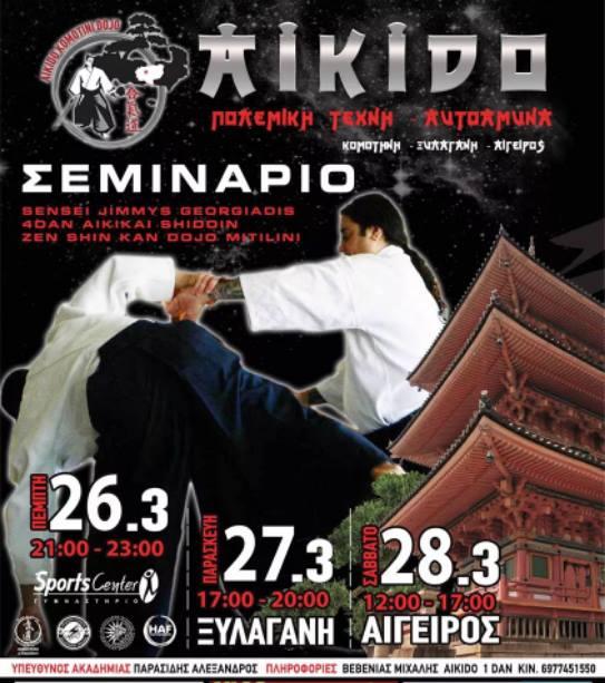 aikido seminar komotini
