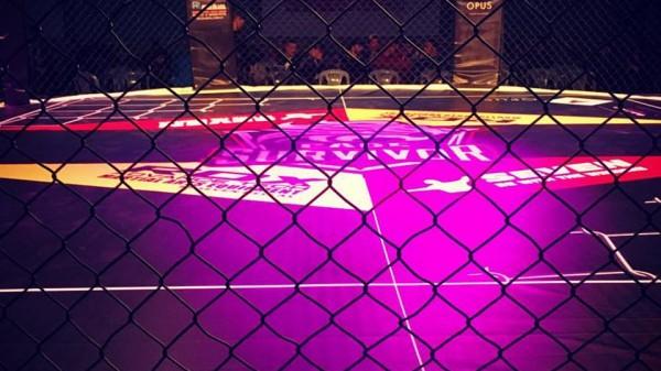 Fightcast:12.06.2016 – Cage Survivor 5,Επικαιρότητα