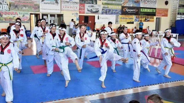 Με επιτυχία διεξήχθη το δεύτερο  Baby Cup Taekwondo 2017 στην Καρδίτσα