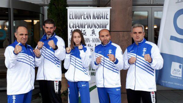 Ακαδημία Shinkyokushinkai Καράτε: Απολογισμός για Ευρωπαϊκό Βουδαπέστης